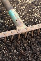 Step 4 of planting grass seed - Raking seed lightly into soil