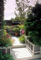 Small urban roof garden with decking area and raised beds and containers of Chrysanthemum, Salvia, grass, Sedum and Betula. Wooden bench with cushion - New York USA