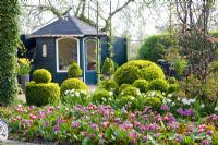 Summerhouse surrounded by Buxus topiary and Spring beds including Narcissus 'Thalia', Tulipa 'Wirosa' and Bergenia