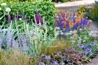 Mixed summer border at RHS Chelsea Flower Show 2008