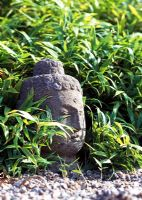 Buddah's head surrounded by bamboo