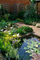 Square brick edged pond with Nymphaea in small urban back garden. Trellis work boundary fence.