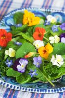 Herb salad of edible flowers and leaves, including borage, nasturtium flowers and leaves, pansy, parsley and sorrel.