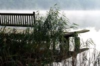 Wooden bench, jetty and diving board, overlooking a misty lake, Norfolk reeds in foreground
