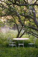 White ironwork table and chairs under an apple tree with Anthriscus sylvestris - Cow Parsley