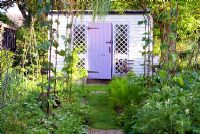 Painted garden shed in vegetable garden