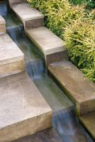 Water running down stepped rill with clipped hedge of Lonicera nitida 'Baggesen's Gold'