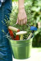 Woman holding metal bucket containing plant and tools