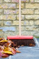 Swept up pile of autumnal leaves with long handled yard brush