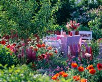 Dining table and chairs in garden with 