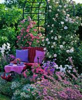 gap gardens bench in garden under rose arch with rosa. Black Bedroom Furniture Sets. Home Design Ideas