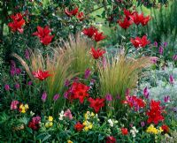 Multicolored summer border with Lilium, Antirrhinum, Stachys, Stipa tenuissimaand Artemisia