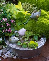 Miniture water feature with ceramic fish, gravel, Pistia, Eichhornia, Sagina, Nemesia and Ipomoea batatas