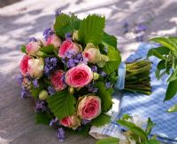 Mixed bouquet of Rosa, Myosotis and Corylus leaves