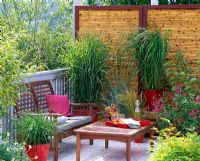 Balcony with bench and table and from left to right - Deschampsia, Miscanthus sinensis 'Zebrinus', Helictotrichon, Stipa, Spartina, Leycesteria and Pelargonium in pots