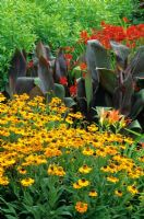 Hot border planting including Helenium 'Wyndley', Hemerocallis, Canna and Crocosmia x crocosmiflora 'Firebird'