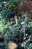 Solar lights placed along path with Galanthus and Vinca growing on the bank