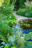 Pebble lined wildlife pond with marginal planting and Nymphaea