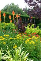 Kniphofia uvaria 'Nobilis', Canna 'Wyoming', Euphorbia wallichii, Helenium, Phormium 'Yellow Wave' and Rudbeckia fulgida var. sullivantii 'Goldsturm' - The Square Garden, RHS Rosemoor, Devon