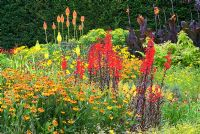 Canna 'Wyoming', Helenium 'Waltraut', Kniphofia uvaria 'Nobilis' and Lobelia cardinalis 'Bee's Flame' - The Square Garden, RHS Rosemoor, Devon