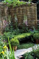Woven willow fencing and Chamomile seat in herb garden. Planting of