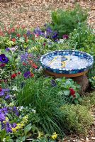 Mosaic birdbath surrounded by edible plants including chives, thyme and mint - The Eats Shoots and Leaves Garden, RHS Cardiff Flower Show 2009