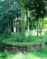 Living seat with willow edging around tree