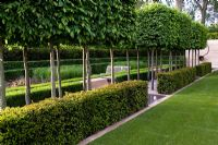 Carpinus betulus box heads, Taxus baccata hedge, marble paving & water features with steel sculpture by Nigel Hall, wooden bench seating, perennial beds including Deschampsia cespitosa, Paeonia 'Buckeye Belle' & Astrantia, layered hedging of Caprinus betulus, Taxus baccata & Buxus sempervirens. The Laurent-Perrier Garden, Sponsored by Champagne Laurent-Perrier - Gold medal winner at RHS Chelsea Flower Show 2009
