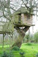 Wooden tree house with a rope swing