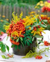 Sorbus and Solidago in tabletop floral display