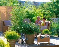 Women relaxing on terrace, container plantings include Phyllostachys 'Bissetii', Pleioblastus and Pogonatherum