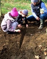 Mother and children planting bean seeds at an allotment in the autumn