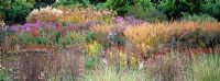 Late autumn border of grasses, perennials and seedheads including Achnatherum brachytrichum, Miscanthus sinensis, Eupatorium maculatum 'Atropurpureum', Aster novae-angliae 'Barr's Blue', Aster novi-belgii 'Schšne von Dietlikon', Chrysanthemum indicum, Salvia sclarea var. turkestanica, Achillea filipendulina 'Coronation Gold', Phlomis russeliana, Festuca mairei, Verbascum densiflorum, Sedum telephium 'Herbstfreude', Chrysopgon gryllus and Veronica longifolia hybrid at Hermannshof Garden, Germany