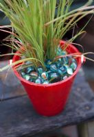Carex in red seaside bucket with mulch of marbles