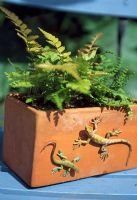 Plastic lizards on clay pot