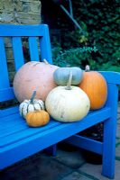 Pumpkins on blue seat on poatio