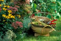 Garden trug with secateurs and autumn border