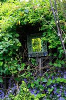 A fence mounted mirror reflects light into a narrow town garden surrounded by Japanese honeysuckle with Campanula portenschlagiana growing up from below