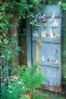 Painted Shed Door storing plant labels in Summer