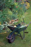 Wheelbarrow and tools in a garden
