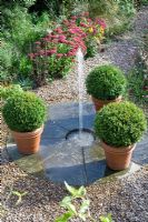 View down to the spout water feature with trio of large box balls in terracotta pots