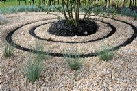 Spiral of crushed black basalt in gravel garden with Ophiophogon in the centre - RHS Tatton park flower show