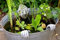 Small pond in recycled galvanised bath