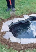 Step by step. Building a pond. Step 13. Installing a pond with a Rigid Liner and covering with soil