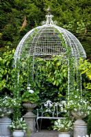 Ornamental Pavillion with Hedera colchica 'Sulphur Heart' - Ivy and containers