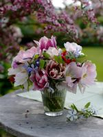 Floral display of Tulipa, Phlox, Epimedium and Silene dioica on wooden table