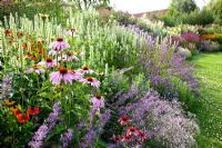 Mixed border of Nepeta grandiflora, Helenium 'Sahin's Early Flowerer', Echinacea purpurea, Agastache 'Alabaster' and Limonium