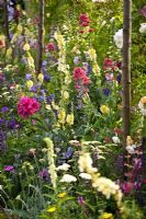 Dining Out flowerbed - BBC Gardener's World Live 2006