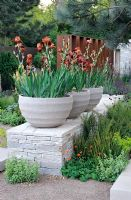 Iris 'Action Front' in stone tubs placed on dry stone wall - The Daily Telegraph Garden, Best in Show, Gold medal winner, Chelsea Flower Show 2010