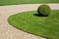 Circular gravel driveway with grass centre and Box ball